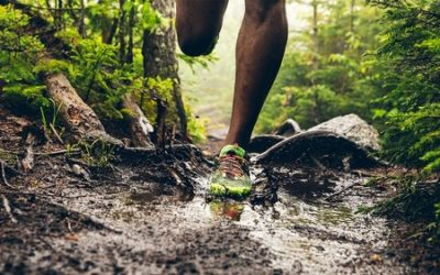 Nutrition for Trail Running