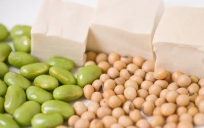 5 alternatives for going Meat-Free